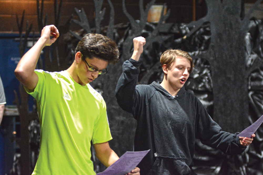 Shakespeare Festival visits McNary