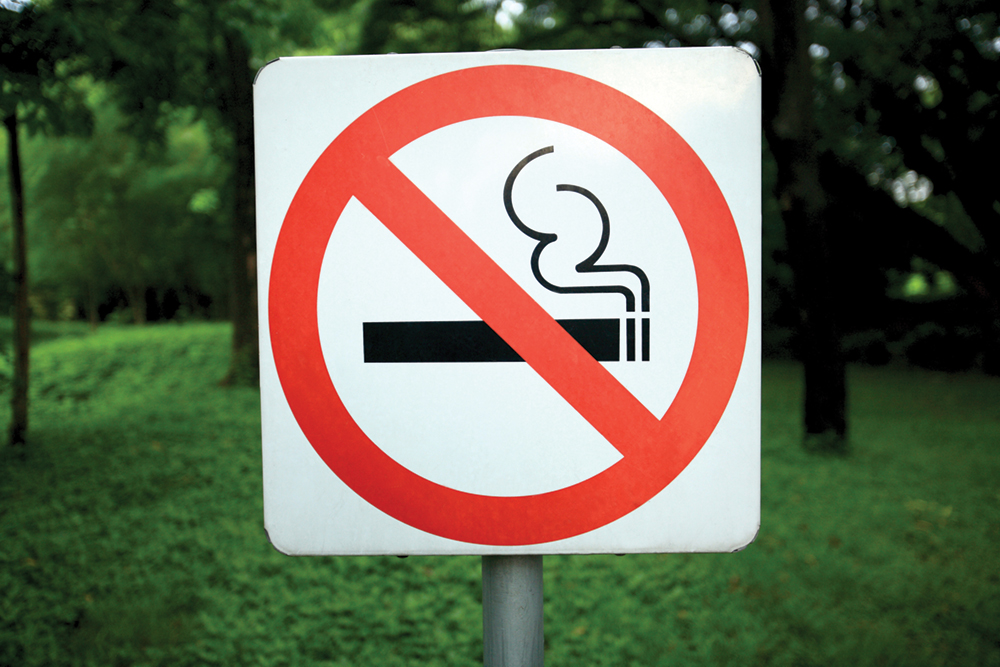Board sets hearing on smoking ban in parks