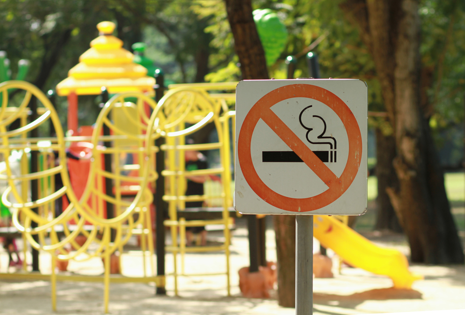 Board backs parks smoking ban 7-2
